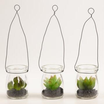 Hanging Mini Succulent Jars Set of 3