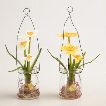 Hanging Mini Daffodil Jars Set of 2