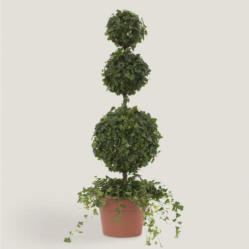 Live Ivy Triple Ball on Stem Topiary
