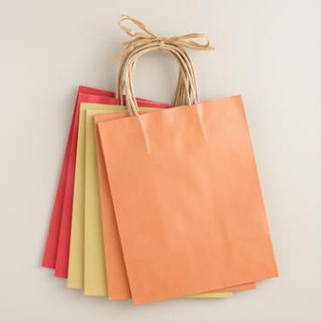 Medium Kraft Gift Bags Set of 6