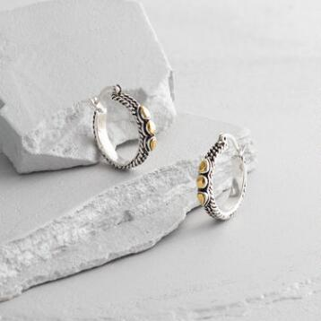 Small Silver and Gold Hoop Earrings