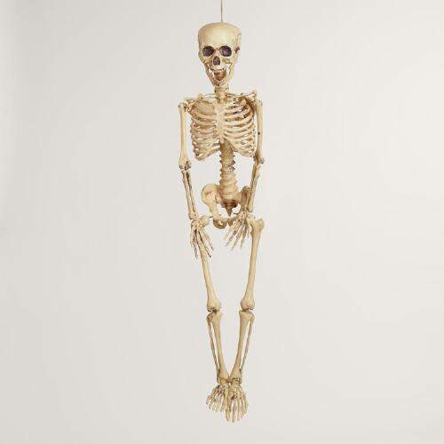 Natural Classic Hanging Skeleton