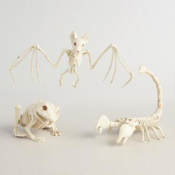 Skeleton Creatures Set of 3