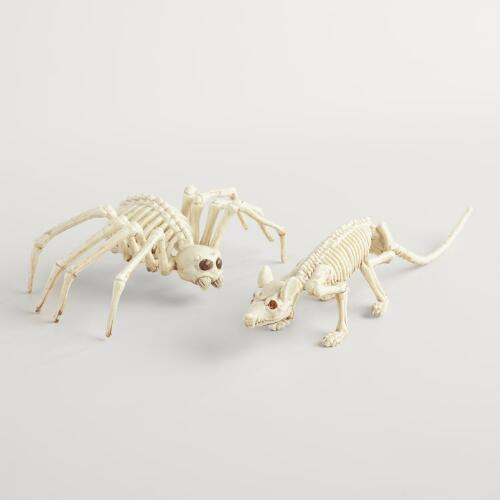 Rat and Spider Skeletons Set of 2