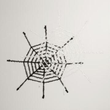Black and White Spider Webs Set of 2