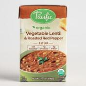 Pacific Soups Vegetable Lentil and Pepper Soup Set of 2