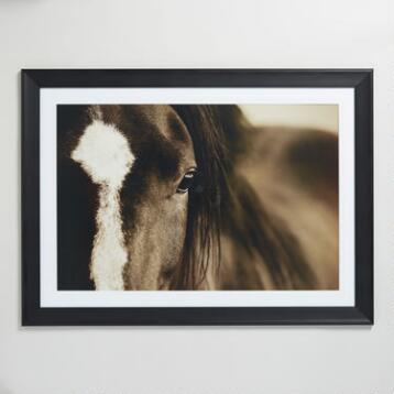 Dark Horse Eyes by Lisa Dearing with Frame