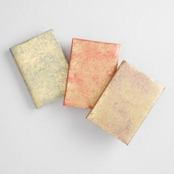 Metallic Leather Notebooks Set of 3