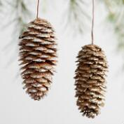 Glittered Pinecone Boxed Ornaments Set of 24