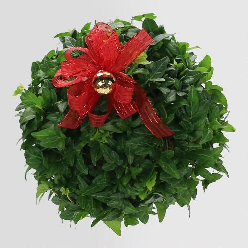 Live Ivy Kissing Ball with Red Bow