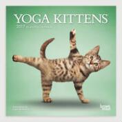 Yoga Kittens Mini Wall Calendar