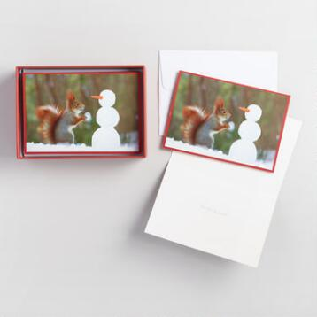 Squirrel and Snowman Boxed Holiday Cards Set of 20