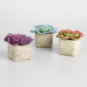 Faux Pastel Succulents in Lava Pots Set of 3