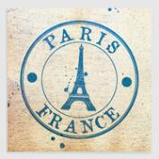 Passport to France Canvas Print