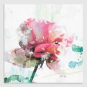 Soft Pink Rose Square by Leila