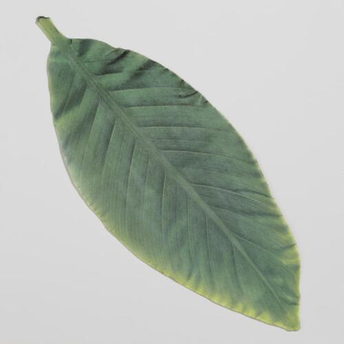 Parchment Banana Leaves, Set of 10