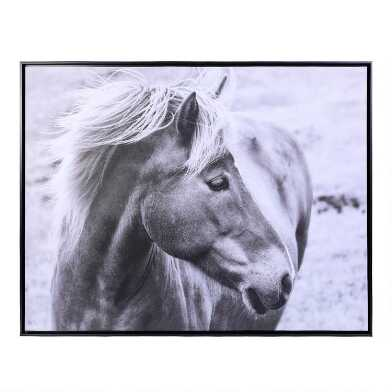 Equestrian Dream Black and White Framed Canvas Wall Art