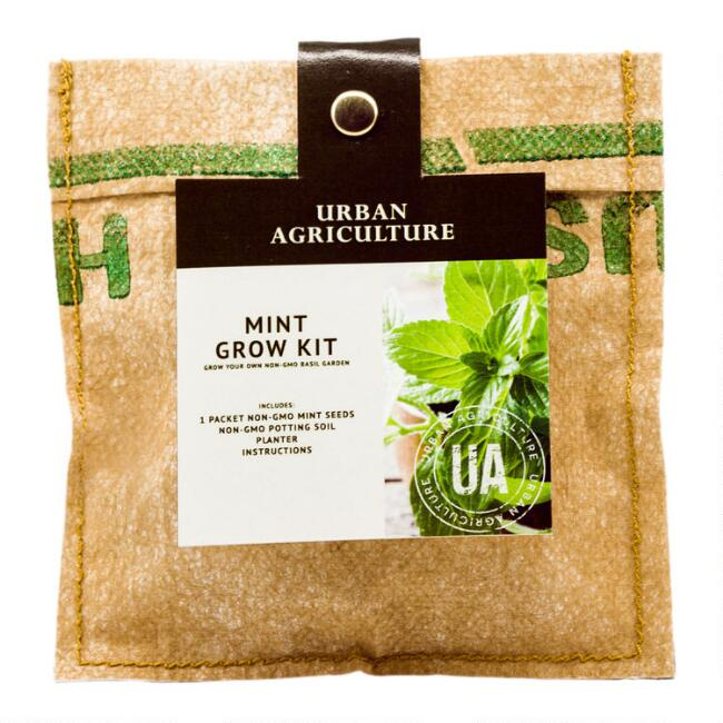 Urban Agriculture Mint Grow Bag Kit