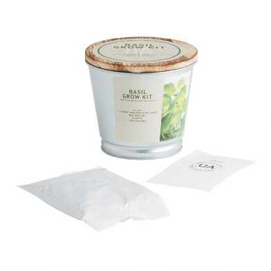Urban Agriculture Tin Pail Basil Grow Bag Kit