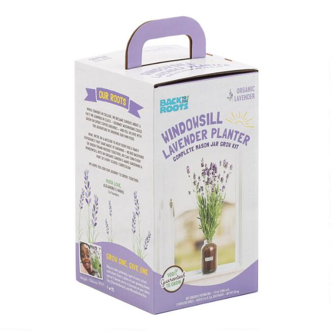 Back to the Roots Organic Lavender Windowsill Grow Kit
