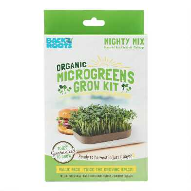 Back to the Roots Mighty Mix Organic Microgreens Grow Kit