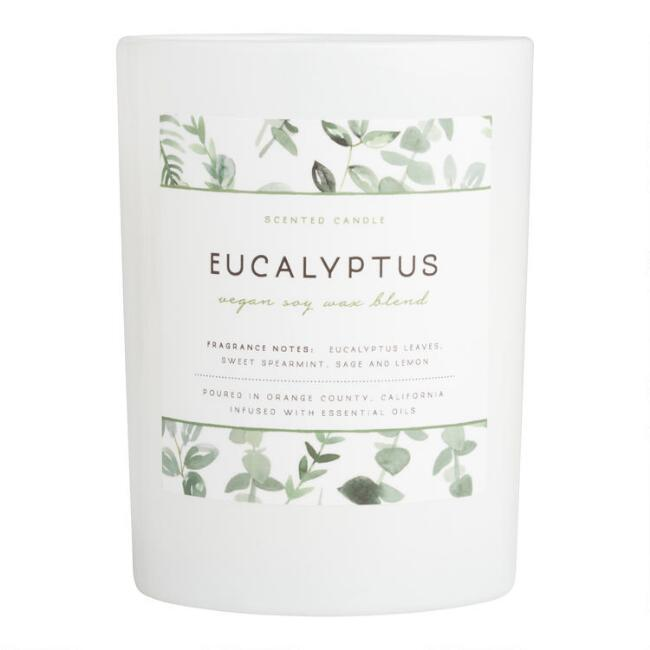 Eucalyptus Frosted Glass Filled Jar Candle