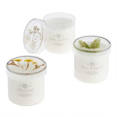Pressed Botanical Glass Filled Jar Candle With Lid