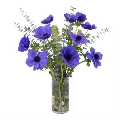 Fresh Blue Anemone and Baby Blue Eucalyptus Bouquet