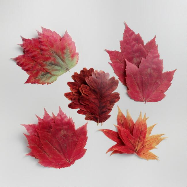 Parchment Paper Fall Leaves