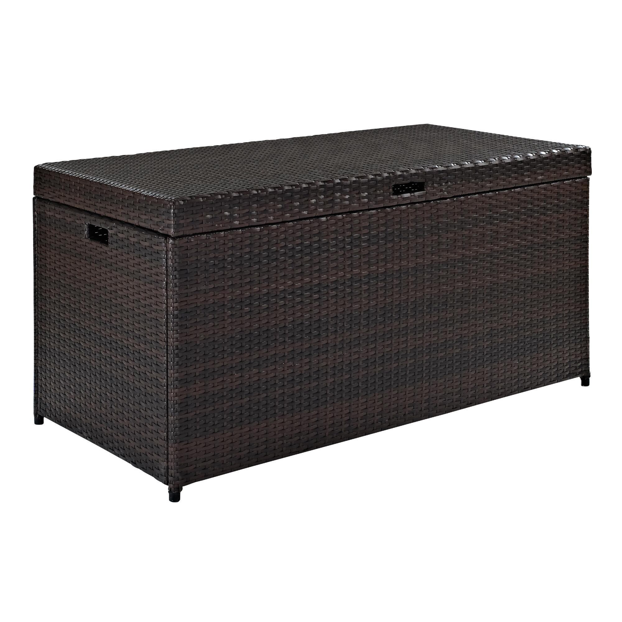 Pinamar Storage Chest: Brown - Resin by World Market