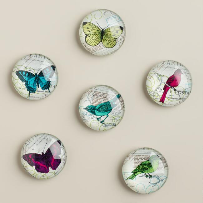 Bird and Butterfly Magnets, 6-Pack