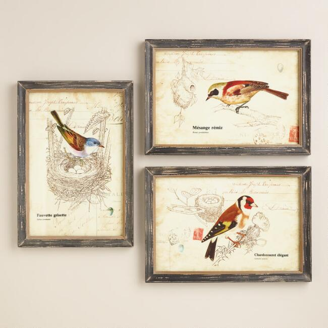 Nature Birds Wall Art, Set of 3 | World Market