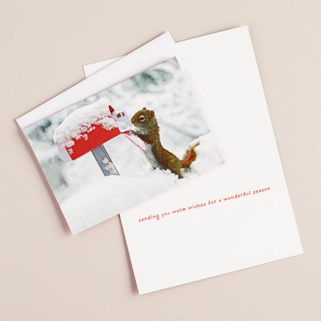 Squirrel greetings boxed holiday cards set of 20 world market squirrel greetings boxed holiday cards set of 20 m4hsunfo