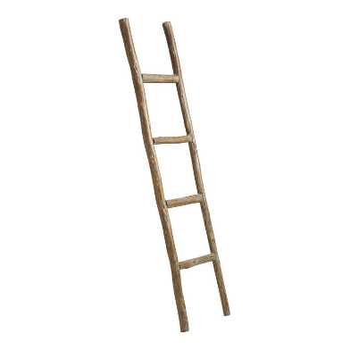 Natural Eucalyptus Ladder Decor