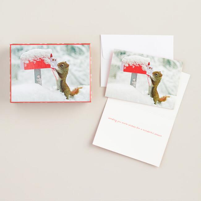 Squirrel Greeting Cards, Set of 20