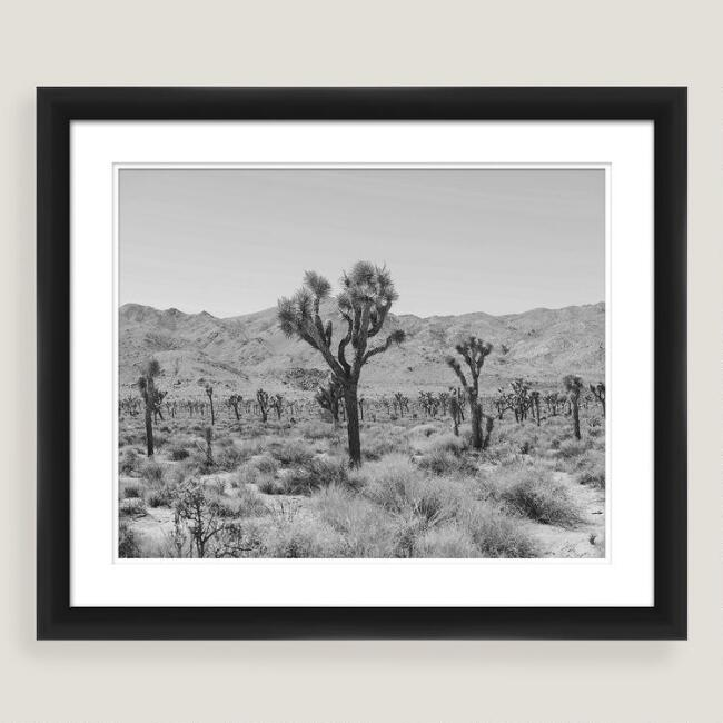 Dry Heat Shadow Box Framed Photo Print Wall Art