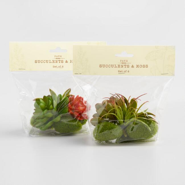 6 Pack Faux Succulent and Moss Assortment Set of 2