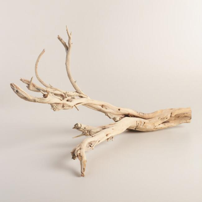 Natural Ghostwood Branch