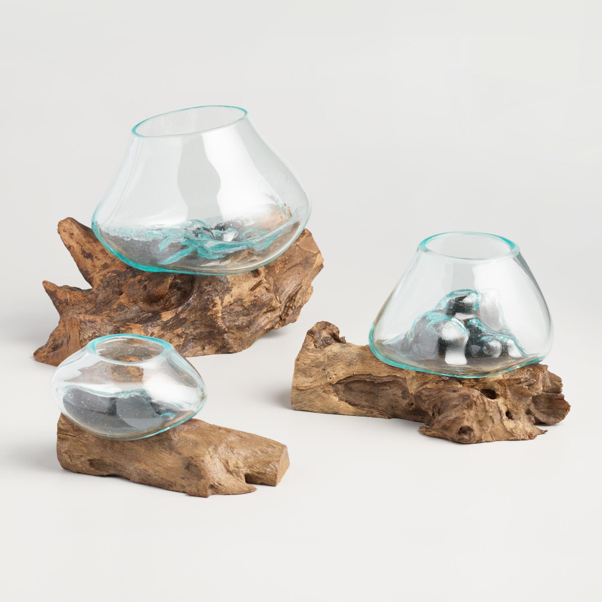 Driftwood and Blown Glass Bowl: Natural - Small by World Market Small