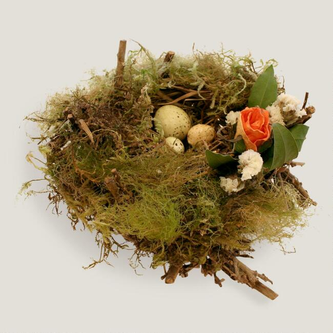 Live Moss and Easter Egg Nest