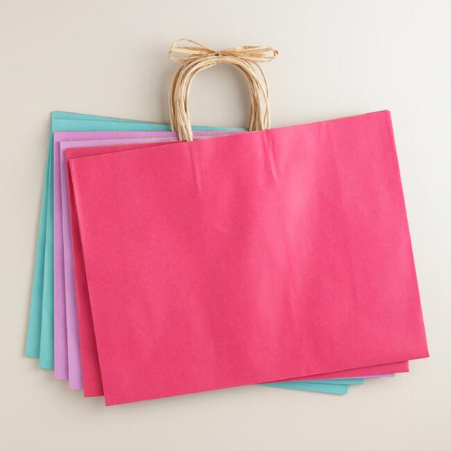 Large Kraft Gift Bags Set of 6