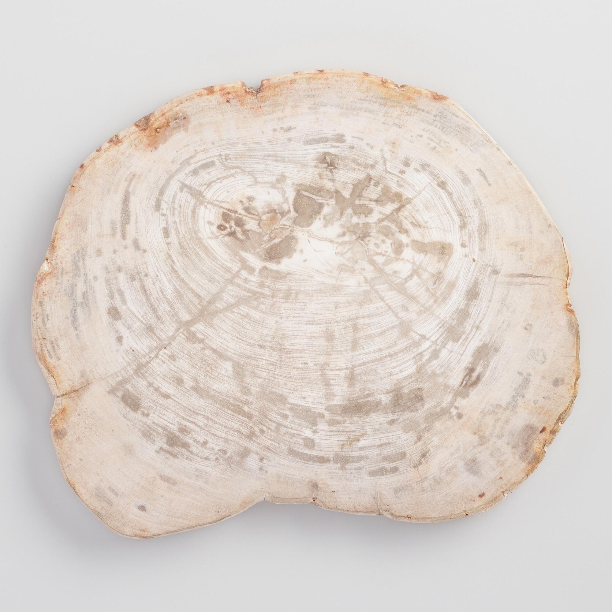 Petrified Wood Cutting Board by World Market