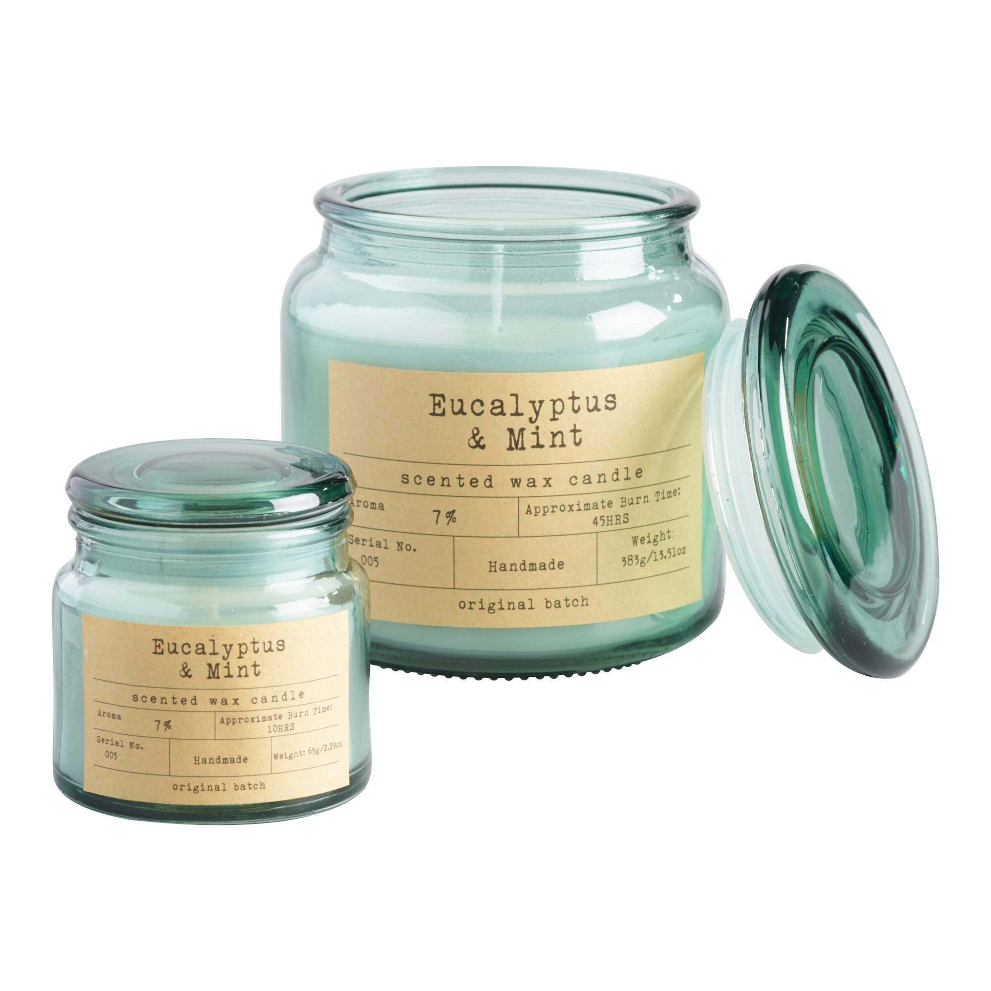 Eucalyptus Mint Apothecary Jar Candle: Blue/Brown/Gray/Pink - Mini by World Market Mini
