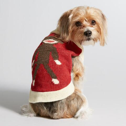 Sock Monkey Knit Dog Sweater