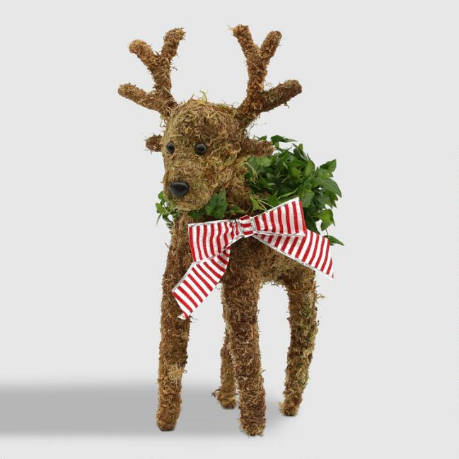 Live Ivy and Moss Reindeer with Red Bow