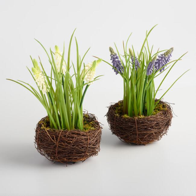 Twig Nests with Hyacinth Set of 2