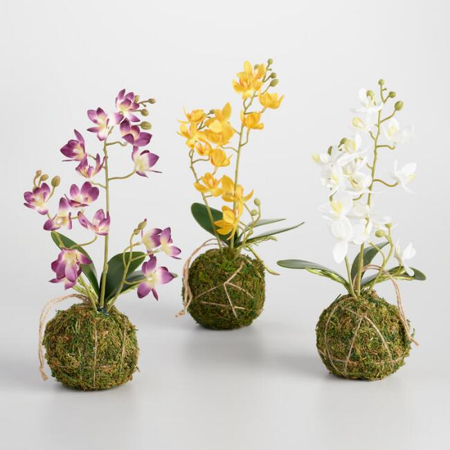 Hanging Faux Orchid Kokedama Set of 3