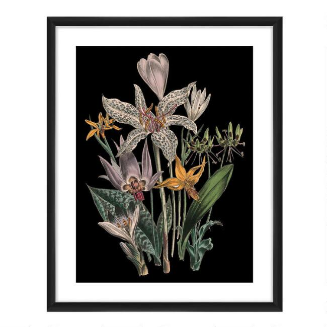 Botanical I Framed Wall Art