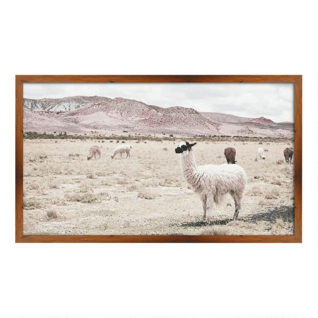 Llama Valley Framed Wall Art