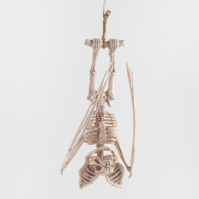 Hanging Bat Skeleton